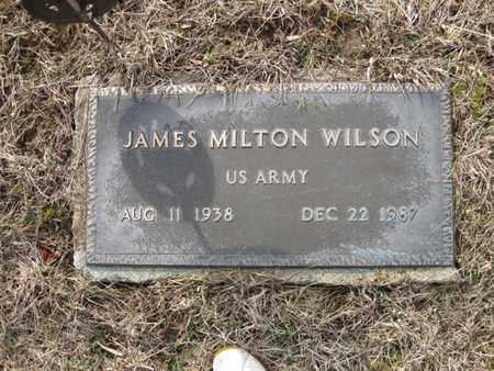 WILSON, JAMES MILTON - Vinton County, Ohio | JAMES MILTON WILSON - Ohio Gravestone Photos