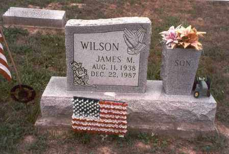 WILSON, JAMES MILTON - Vinton County, Ohio | JAMES MILTON WILSON - Ohio Gravestone Photos