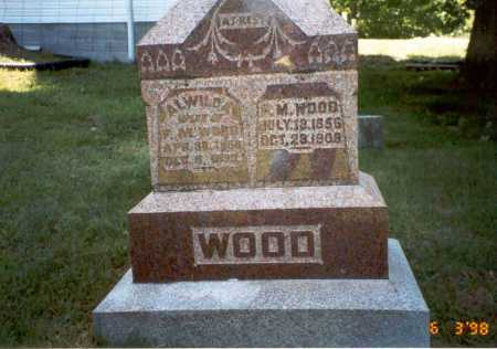 WOOD, ALWILDA - Vinton County, Ohio | ALWILDA WOOD - Ohio Gravestone Photos