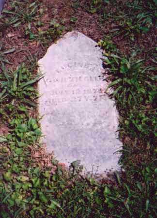 ZIEGLER, LUCINDA - Vinton County, Ohio | LUCINDA ZIEGLER - Ohio Gravestone Photos