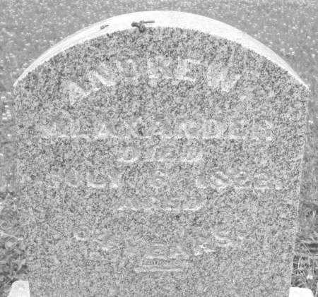 ALEXANDER, ANDREW - Warren County, Ohio | ANDREW ALEXANDER - Ohio Gravestone Photos