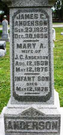 ANDERSON, JAMES C. - Warren County, Ohio | JAMES C. ANDERSON - Ohio Gravestone Photos