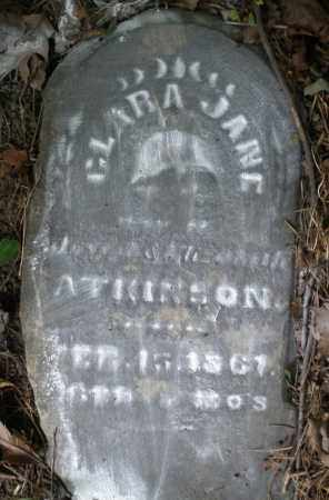 ATKINSON, CLARA JANE - Warren County, Ohio | CLARA JANE ATKINSON - Ohio Gravestone Photos