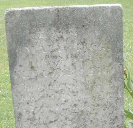 BIGG, MARY - Warren County, Ohio | MARY BIGG - Ohio Gravestone Photos