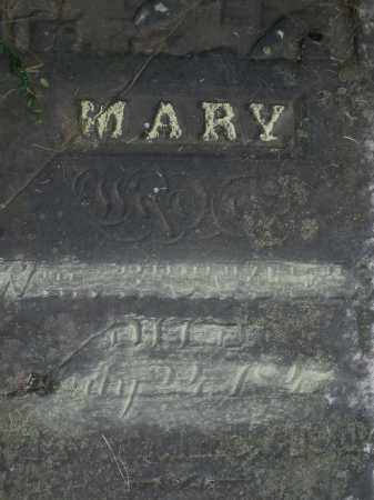 BONTER, MARY - Warren County, Ohio | MARY BONTER - Ohio Gravestone Photos
