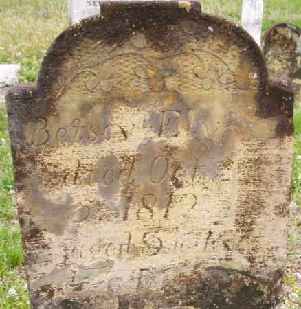 ELY, BETSY - Warren County, Ohio   BETSY ELY - Ohio Gravestone Photos