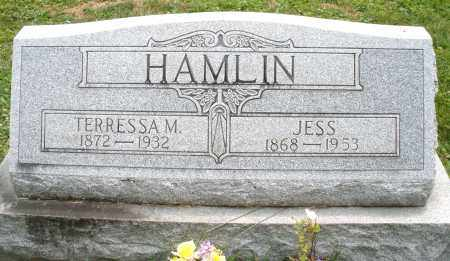 HAMLIN, TERRESSA M. - Warren County, Ohio | TERRESSA M. HAMLIN - Ohio Gravestone Photos