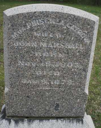 MARSHALL, PRISCILLA - Warren County, Ohio | PRISCILLA MARSHALL - Ohio Gravestone Photos