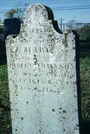 MCCORD JOHNSON, MARY - Warren County, Ohio | MARY MCCORD JOHNSON - Ohio Gravestone Photos