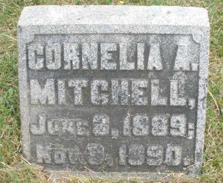 MITCHELL, CORNELIA A. - Warren County, Ohio | CORNELIA A. MITCHELL - Ohio Gravestone Photos