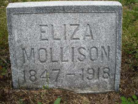 MOLLESON, ELIZA - Warren County, Ohio | ELIZA MOLLESON - Ohio Gravestone Photos