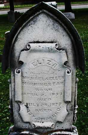 MORNINGSTAR, ELIZA - Warren County, Ohio | ELIZA MORNINGSTAR - Ohio Gravestone Photos