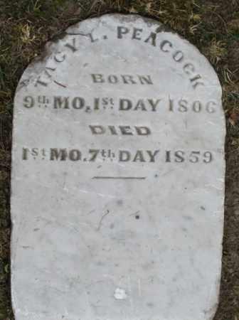 PEACOCK, TAGY - Warren County, Ohio | TAGY PEACOCK - Ohio Gravestone Photos