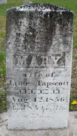 TAPSCOTT, MARY - Warren County, Ohio | MARY TAPSCOTT - Ohio Gravestone Photos