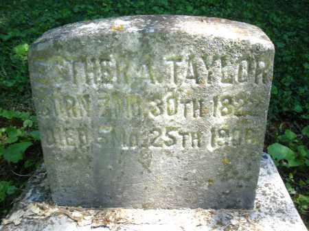 TAYLOR, ESTHER ANN - Warren County, Ohio | ESTHER ANN TAYLOR - Ohio Gravestone Photos