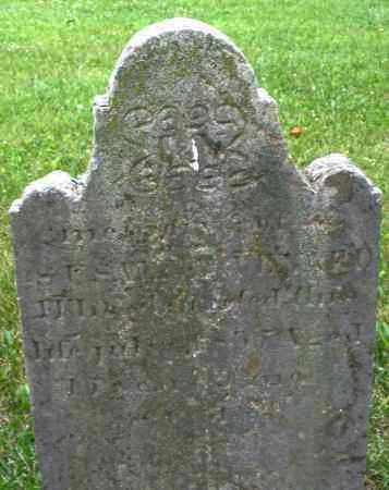 VENARD, SUSANNA - Warren County, Ohio | SUSANNA VENARD - Ohio Gravestone Photos
