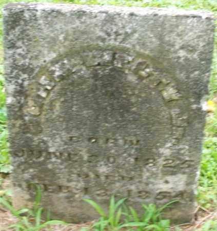 WELTY, CHARLES - Warren County, Ohio   CHARLES WELTY - Ohio Gravestone Photos