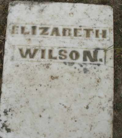 WILSON, ELIZABETH - Warren County, Ohio | ELIZABETH WILSON - Ohio Gravestone Photos