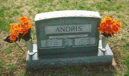 ANDRIS, ARTHUR - Washington County, Ohio | ARTHUR ANDRIS - Ohio Gravestone Photos