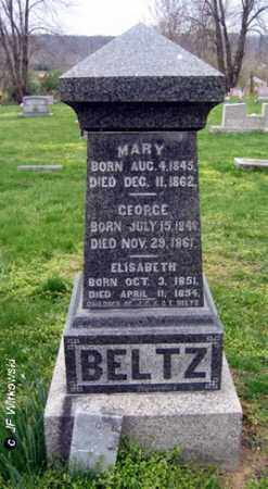 BELTZ, GEORGE - Washington County, Ohio | GEORGE BELTZ - Ohio Gravestone Photos