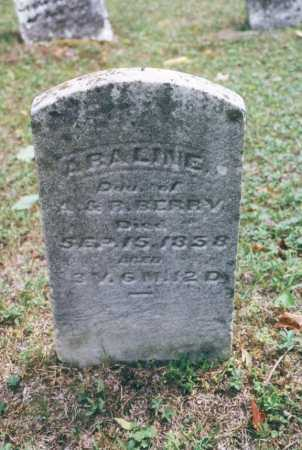 BERRY, ABALINE - Washington County, Ohio | ABALINE BERRY - Ohio Gravestone Photos