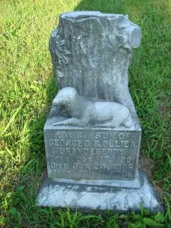 BRANDEBERRY, ROY C. - Washington County, Ohio | ROY C. BRANDEBERRY - Ohio Gravestone Photos