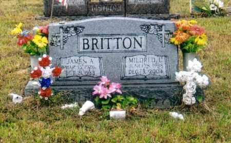 BRITTON, JAMES A. - Washington County, Ohio | JAMES A. BRITTON - Ohio Gravestone Photos