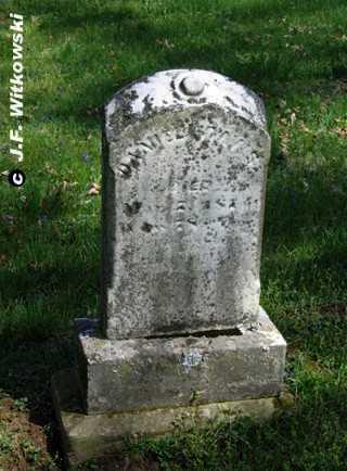 DAVIS, DANIEL - Washington County, Ohio   DANIEL DAVIS - Ohio Gravestone Photos