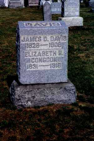 DAVIS, ELIZABETH W. - Washington County, Ohio | ELIZABETH W. DAVIS - Ohio Gravestone Photos
