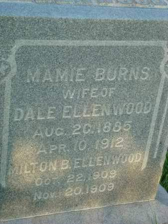 ELLENWOOD, MILTON B. - Washington County, Ohio | MILTON B. ELLENWOOD - Ohio Gravestone Photos