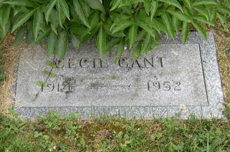 GANT, THEADORE CECIL - Washington County, Ohio | THEADORE CECIL GANT - Ohio Gravestone Photos