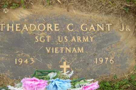 GANT, THEADORE CECIL, JR. - Washington County, Ohio | THEADORE CECIL, JR. GANT - Ohio Gravestone Photos