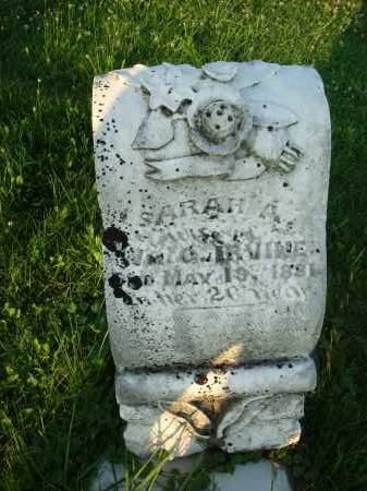 IRVINE, SARAH A. - Washington County, Ohio | SARAH A. IRVINE - Ohio Gravestone Photos