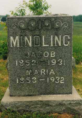 MINDLING, ANNA MARIA - Washington County, Ohio | ANNA MARIA MINDLING - Ohio Gravestone Photos