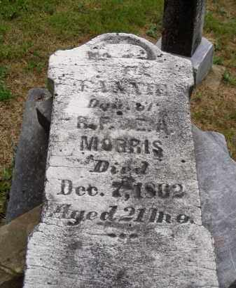 MORRIS, FANNIE - Washington County, Ohio | FANNIE MORRIS - Ohio Gravestone Photos