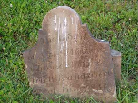 SCHOONOVER, ASA - Washington County, Ohio | ASA SCHOONOVER - Ohio Gravestone Photos