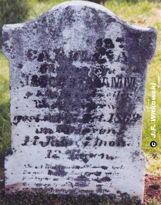 SCHRAMM, CAROLINA - Washington County, Ohio | CAROLINA SCHRAMM - Ohio Gravestone Photos