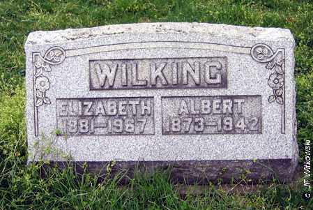 WILKING, ELIZABETH - Washington County, Ohio | ELIZABETH WILKING - Ohio Gravestone Photos