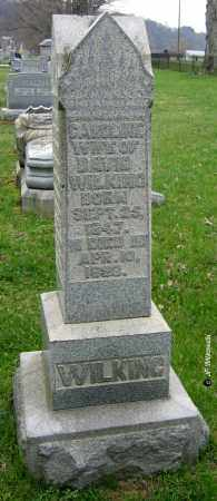 PFEIL WILKING, CAROLINE - Washington County, Ohio | CAROLINE PFEIL WILKING - Ohio Gravestone Photos