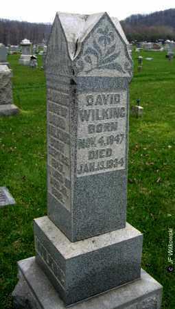 WILKING, DAVID THEOBALD - Washington County, Ohio | DAVID THEOBALD WILKING - Ohio Gravestone Photos