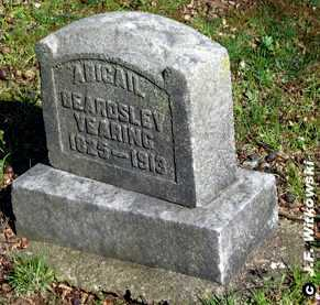 "GRANT BEARDSLEY YEARING - YERI, ABIGAIL ""ABBIE"" - Washington County, Ohio 