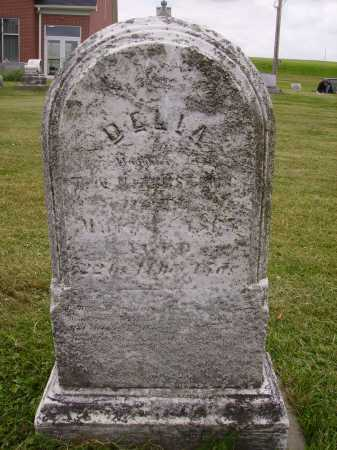 UNKNOWN, DELIA - Wayne County, Ohio | DELIA UNKNOWN - Ohio Gravestone Photos