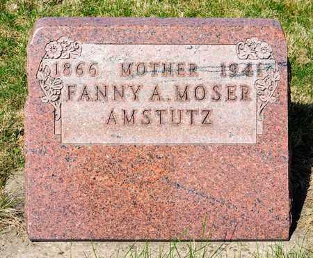 AMSTUTZ, FANNY A - Wayne County, Ohio | FANNY A AMSTUTZ - Ohio Gravestone Photos