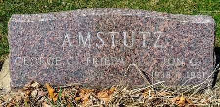 AMSTUTZ, GEORGE CALVIN - Wayne County, Ohio | GEORGE CALVIN AMSTUTZ - Ohio Gravestone Photos
