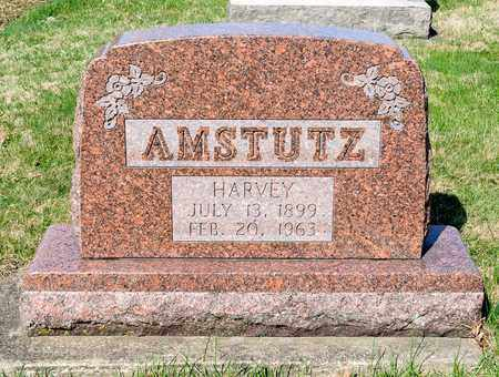 AMSTUTZ, HARVEY - Wayne County, Ohio | HARVEY AMSTUTZ - Ohio Gravestone Photos