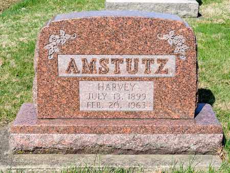AMSTUTZ, HARVEY - Wayne County, Ohio | HARVEY AMSTUTZ - Ohio Gravestone Photos