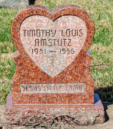 AMSTUTZ, TIMOTHY LOUIS - Wayne County, Ohio | TIMOTHY LOUIS AMSTUTZ - Ohio Gravestone Photos