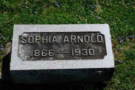 SCHULTZ ARNOLD, SOPHIA - Wayne County, Ohio | SOPHIA SCHULTZ ARNOLD - Ohio Gravestone Photos