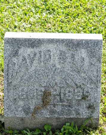 BALE, DAVID - Wayne County, Ohio | DAVID BALE - Ohio Gravestone Photos