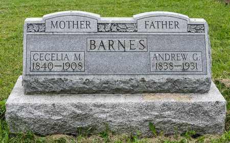 BARNES, CECILA M. - Wayne County, Ohio | CECILA M. BARNES - Ohio Gravestone Photos